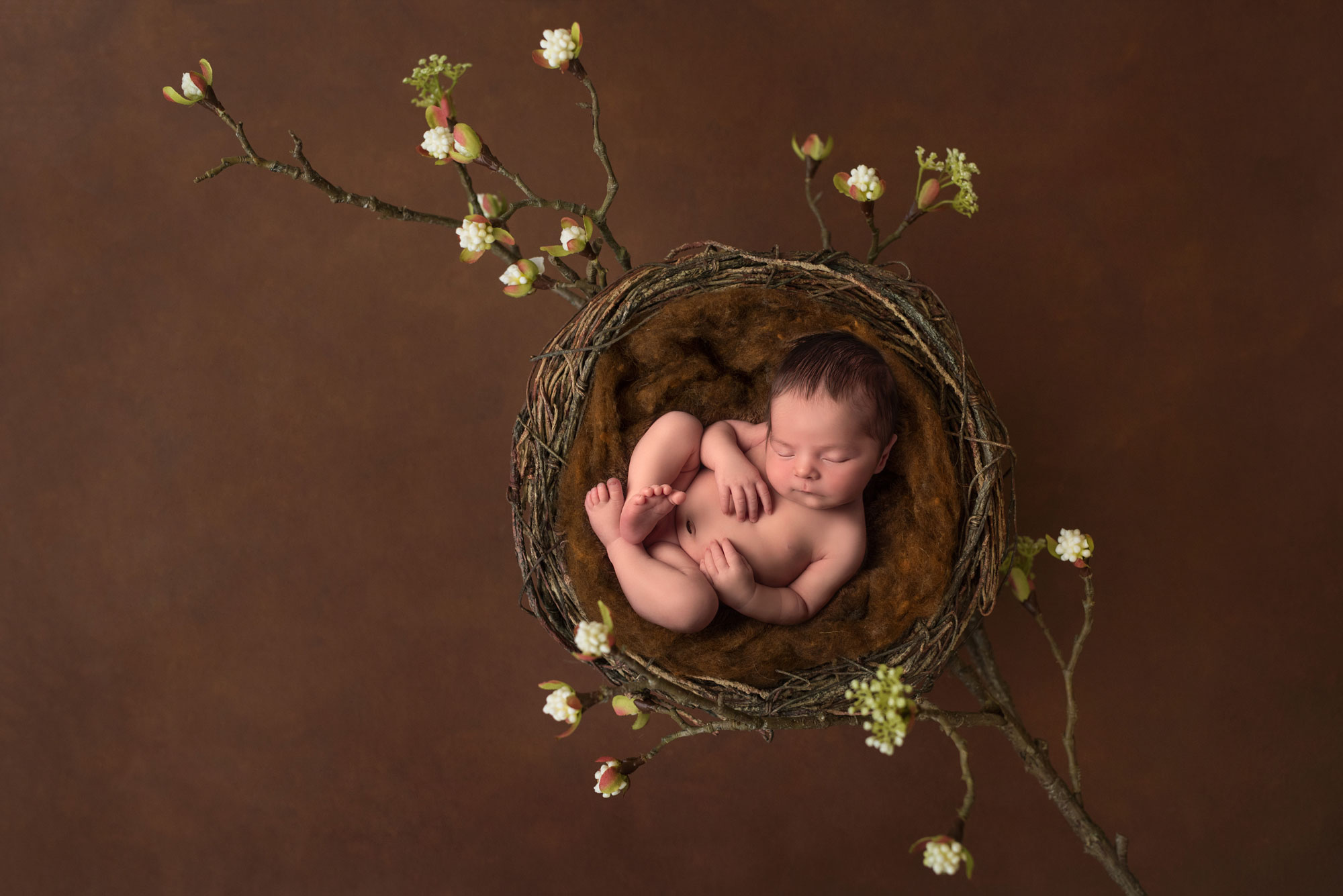 Newborn Photography Byron Bay